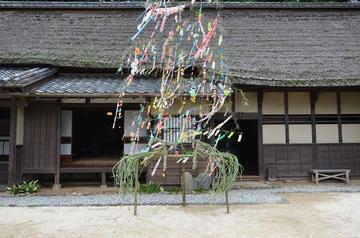 tanabatakazari170701-1.jpg